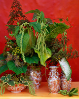 flower-arranging-la103516-green.jpg
