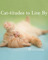 pets_cat_titudes_to_live_by_prnt.jpg