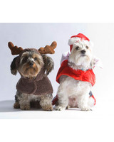 pets_ugc_santa_11665625_20978169.jpg