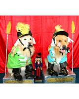 pets_ugc_santa_11744563_11680331.jpg