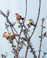 miniature decorative pom pom song birds