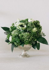 valentinesdayflowers-0117-greens.jpg (skyword:392789)