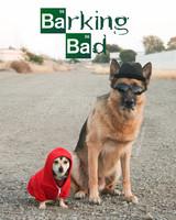 barking-bad-halloween-thedunderboy.jpg
