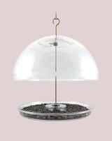 droll yankees domed bird feeder