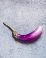 eggplant-glossary-116-d110486-0515.jpg