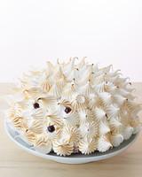 hedgehog-meringue-cake-077-d112178.jpg