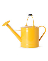 lemon-utility-watering-can-ms110096.jpg