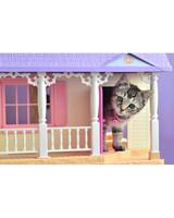 pets-at-play-0311-12928172_30524502.jpg