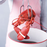 boiled or steamed lobsters