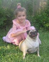 pets_adoption_6697397_122717_16678055.jpg