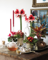 seasonal-flowers-farm-table-mld108425.jpg