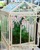 wardian-case-orchids-6105-021811-1215.jpg
