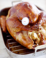 roast turkey thermometer