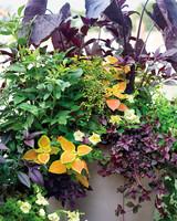 tangletown-gardens-minnesota-202-d111526.jpg
