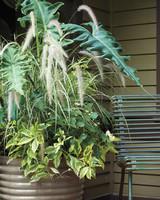 tangletown-gardens-minnesota-303-d111526.jpg