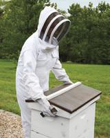 hive-maintenance-1-ms-column-0500-mld106618.jpg