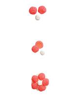 pink-geranium-mayflower-cupcake-368-d112850.jpg