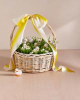 wheatgrass with foam ducklings in easter basket
