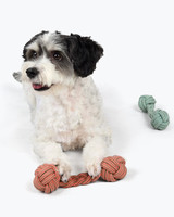 dog dumbbell toys