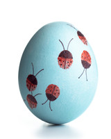egg-dyeing-app-d107182-fingerprint-ladybugs0414.jpg