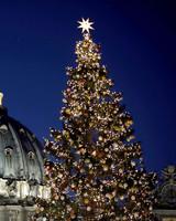 Saint Peter's Square Christmas Tree 2016
