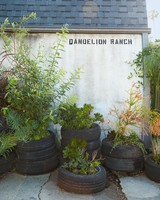 dandelion-ranch-clover-chadwick-exterior-1124-d112251.jpg