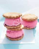 ice-cream-sandwiches-with-raspberry-frozen-yogurt-328-d107437-0615.jpg