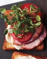 breakfast-sandwiches-161-d112672-fried-egg-breakfast-blt-with-watercress.jpg