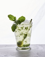 gin julep cocktail