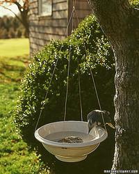 Hanging Bird Basin