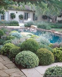 Garden Design 101