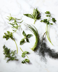 The Smart Cook's Guide to Fresh Herbs