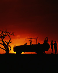 A Beginner's Guide to Safaris