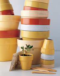 12 Ways to Personalize Terra Cotta Pots