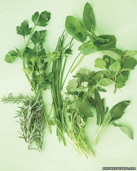 Be Honest: How Many of These Common Herbs Do You Really Use?