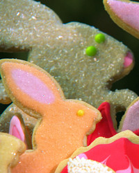 041711_easter_bunnies.jpg