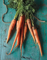 From Cake to Soup, Our Best Carrot Recipes!