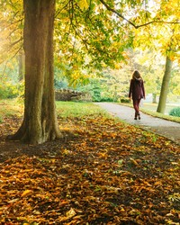 Spending Just Five Minutes in Nature Might Be All You Need to Improve Your Mood