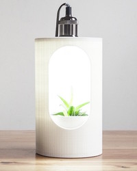 Propagate Plants Like a Pro With This Countertop Incubator