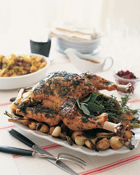 turkey-1103-mla100404.jpg