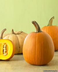 ba102793_1007_pumpkins.jpg