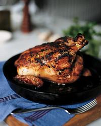 chicken-0306-mla101982.jpg