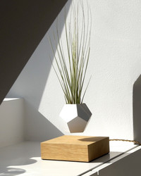 Take Home Decor to New Heights With This Levitating Planter
