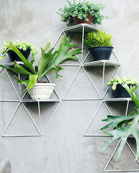 These Geometric Shelves Turn Your Plants Into a Chic Art Installation