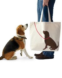 Pet-Inspired Projects