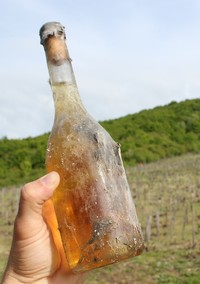 What Is Orange Wine Exactly?