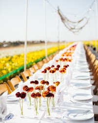Flower Farms Become Dining Rooms for This Cross-Country Dinner Tour