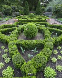 Marthau0026#039;s Culinary Herb Garden
