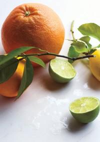 Good Eats: The Health Benefits of Citrus Fruits (+ Recipes!)