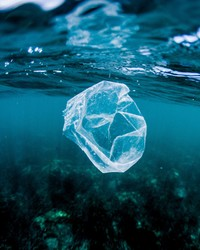 Researchers Have Found Microscopic Plastic Particles Deep in the Ocean